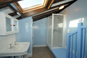 Cottage bathroom is freshly decorated offering a large 900mmx900mm shower space, WC and large hand basin.